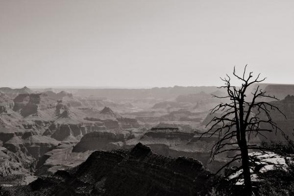 Grand Canyon: Blick über den Canyon