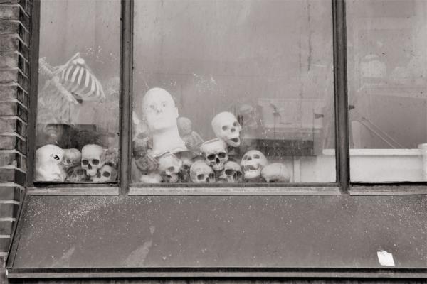 Hamburg: Schädel im Fenster des Dungeons