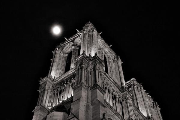 Paris: Cathédrale Notre-Dame de Paris #1