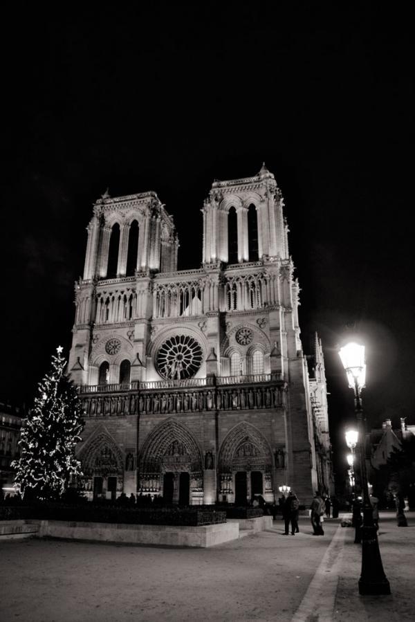 Paris: Cathédrale Notre-Dame de Paris #2